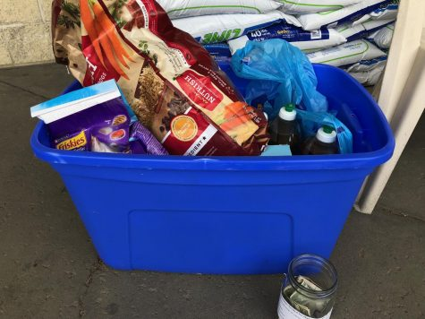 National Honor Society Collects Donations for Greene County Humane Society