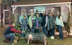 Greene County Swine Show and Sale