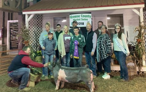 Greene County Swine Show and Sale